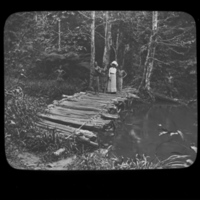 Alice Seeley Harris Crossing the Bridge.jpg