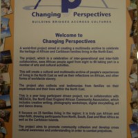 2007 Changing Perspectives Project Poster.JPG