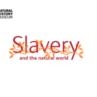 2007 NHM Slavery and the Natural World Educational Worksheet.pdf